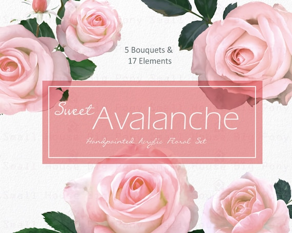 Watercolour Floral Clipart. Handmade, watercolour clipart, wedding diy elements, flowers - Sweet Avalanche Roses