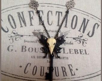 Gothic/steampunk black necklace , Bird Skull