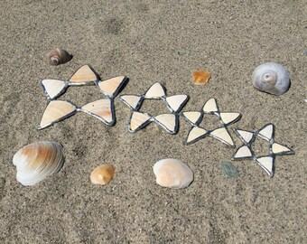 Shell Stars 1