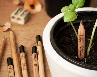 PENCILS FOR FARMING. Write and give them a second life full of aroma and taste. The most eco-friendly gift!