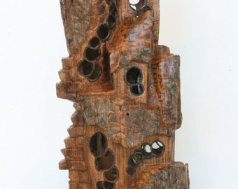 EFFERVESCENT LAIR. This whimsical, fairy house  is made of cottonwood bark, is one-of-a-kind with details not usually found in bark carving,