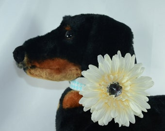 Ivory Flower - Dog Collar Accessory