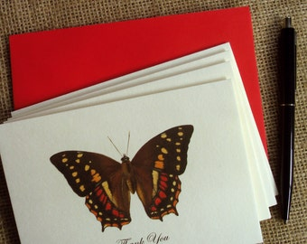 CLEARANCE SALE 50% OFF - Set of 4 Thank You Cards - Vintage Romantic Series - Butterflies - inspired by W. C. Hewitson