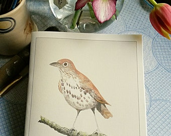 Thrush A5 notebook. Hand painted image then printed on linen-look paper. British Garden Bird. Hand made