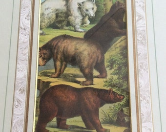 Framed antique chromolithograph from 1880, bears, ready to hang original artwork, animals, children's print, unique gift