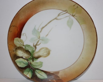 Hand Painted Nappon Plate with Peanuts