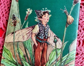 Vintage Flower Fairies of the Wayside 1975