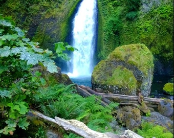Wahclella Falls ...Columbia River gorge Oregon..mounted print!!!