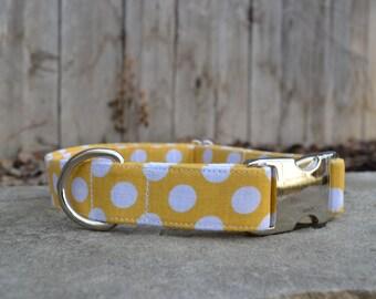 Polka Dot Dog Collar, Yellow, White, Yellow and White Collar, Polka Dots, Female Dog Collar, Girl Dog Collar, Yellow and White Polka Dots