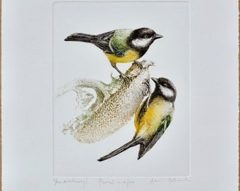 Great tit- handmade copper-plate engraving print