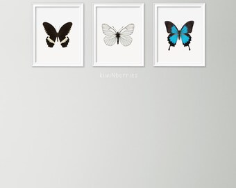 Set of 3 butterfly prints - Morpho butterfly print - Modern home decor - Scandinavian modern wall art - Butterfly art - Entomology prints