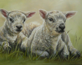 Original Canvas by Alison Armstrong  - Sheep Painting - Texel Lambs