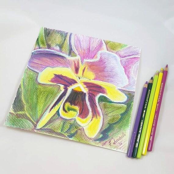 Purple pansy drawing, original, ooak- colored pencils on paper - 20x20 cm./7,9x7,9 icn. Gift idea, wall art, bedroom.