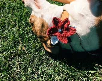Dog Collar Corsage - Handmade Crochet Red/White/Blue Stars Pet Accessory - Patriotic Puppy Gift