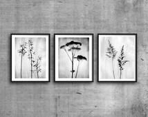 INSTANT DOWNLOAD, Printable Art, Black & White Botanical Print Set, 3 Print Set, Minimalist Plant Prints, Triptych, Scandinavian Prints