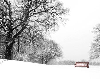 Digital Download, 'Winter Scene', black and white photography by Roger Pan