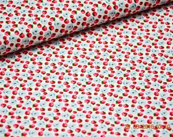 Cotton / Poplin raspberries