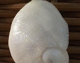 Baby Ear Moon Shell Pendant
