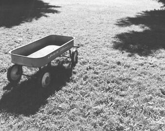 Wagon on the farm