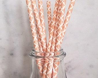 Orange Damask Paper Straws (25)