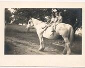 Antique photo white horse kids animal pastural farm