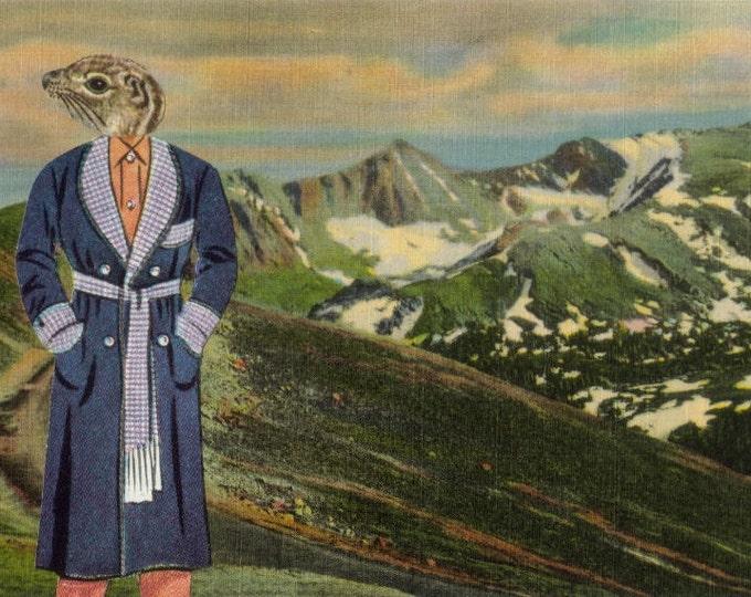 Animal Postcard, Original Collage Art