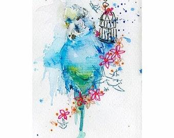 Budgie Art Print. Budgerigar Art. Watercolor Budgie Print. Bird Print. Budgies Wall Art. Budgie Parakeet.