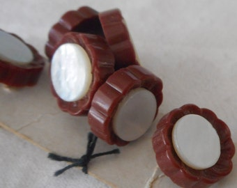 Set of 8 Small VINTAGE Shell in Brown Plastic Flower BUTTONS