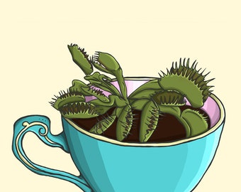 Venus Fly Trap Teacup Planter - A4 Art Print by Hungry Designs