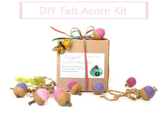 Needle Felting Kit Beginner - Felted Acorn Kit - Wool Acorn Kit - Waldorf Craft Kit - DIY Craft Kit - Children - Kids - Pinks