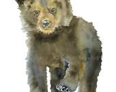 Black Bear Cub Watercolor Painting 11 x 14 Giclee Print Fine Art Reproduction Woodland Animal