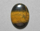 TIGER IRON cabochon oval 22X30mm designer cab