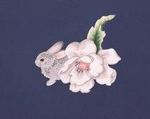 Bun Bun - Print by Katie Bacigalupi