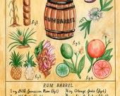 Botanical Rum Barrel print (classic tiki cocktail)