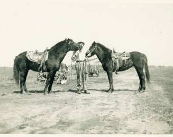 "Vintage Photo ""The Tale of Two Tails"" Horse Farm Pet Snapshot Antique Photo Old Black & White Photograph Found Paper Ephemera Vernacular - 6"