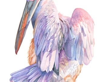 Pelican print of watercolor painting, Angel wings, A3 size. PAW5316, Pelican watercolor painting, coastal decor,  nursery print