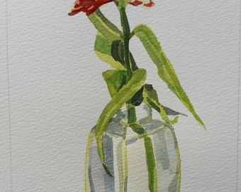 Red Zinnia in Bottle 1, original watercolor on archival paper, reds, greens, blue, transparent glass painting, Michigan artist, woman artist