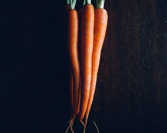 carrot photograph, kitchen wall art, carrots, still life, food photography, rustic, kitchen