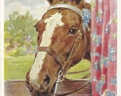 Take Them All - Vintage 1930s Artist-signed Horse and Cookies Postcard