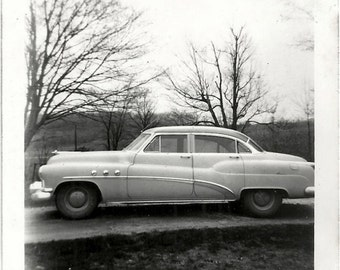 Old Photo Car Trees with no Leaves 1950s Photograph snapshot Vintage Automobile