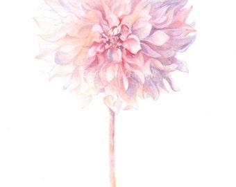 Fine art watercolor painting, flower art, pale purple pink DAHLIA WATERCOLOR PRINT, giclee print, flower interest