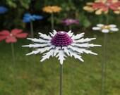 Pollination Flower Stem - Eryngium