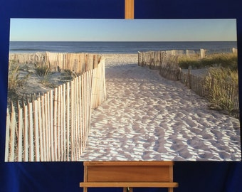 Beach Path to the Ocean