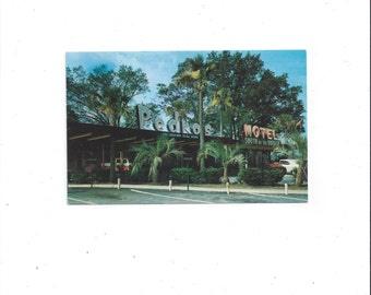 1960s Vintage Color Postcard, Pedro's South of Border Motel, Dillon, South Carolina, Unposted, Vintage Postcard, Don Hylland, Tobacco Trail