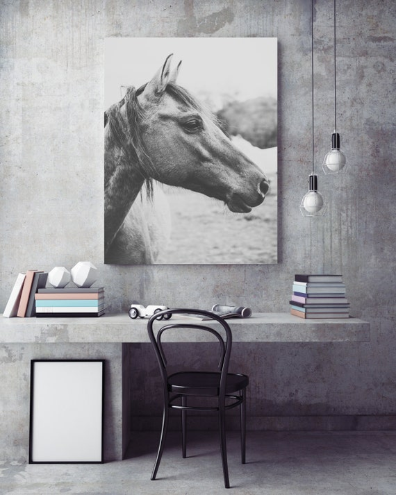 Wall Art Black Horse : Horse photography canvas wall art black and