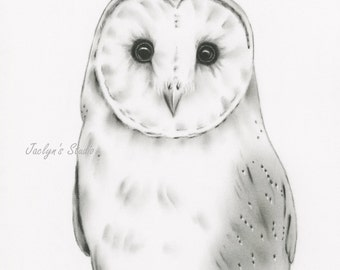 Barn Owl Charcoal Drawing Giclee Print, Barn Owl Art, Owl Drawing, Owl Sketch, Barn Owl Decor
