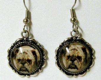 Bulldog earrings - DAP07-070