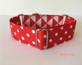 Martingale Dog Collar, Collar martingale, Greyhound Collar, dog leash, colors - 4GUAUS.COM