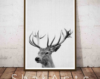 Dear Wall Art, Grey Antler Print, Dear Head, Antlers Deer Print, Antlers Printable Art, Animal Photography Black And White, Deer Poster