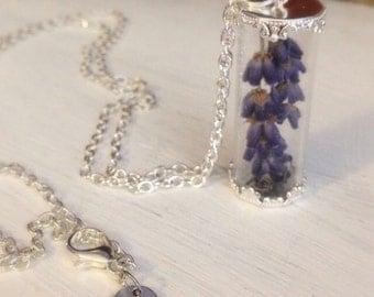 Lavender Necklace, Dried Flower Necklace, Glass Vial Necklace, Lavender